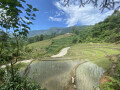 chinh-chu-can-ban-manh-dat-668m2-quy-hoach-dat-o-view-ruong-bac-thang-toan-canh-y-ty-small-0
