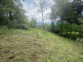 chinh-chu-can-ban-manh-dat-668m2-quy-hoach-dat-o-view-ruong-bac-thang-toan-canh-y-ty-small-2