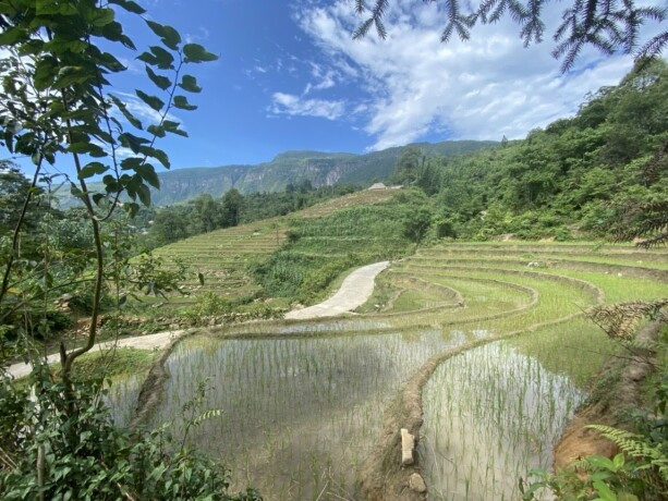 chinh-chu-can-ban-manh-dat-668m2-quy-hoach-dat-o-view-ruong-bac-thang-toan-canh-y-ty-big-0